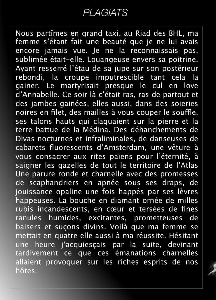 Plagiats  / Luc Eyraud